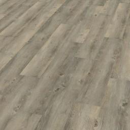 Wineo 600 Wood  Borovice Toscany Grey DB00008