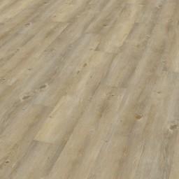 Wineo 600 Wood  Borovice Toscany DB00007