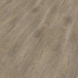 Wineo 600 Wood Aurelia Provence DB00004