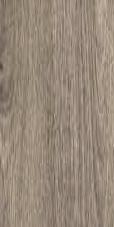 Dub sibiřský